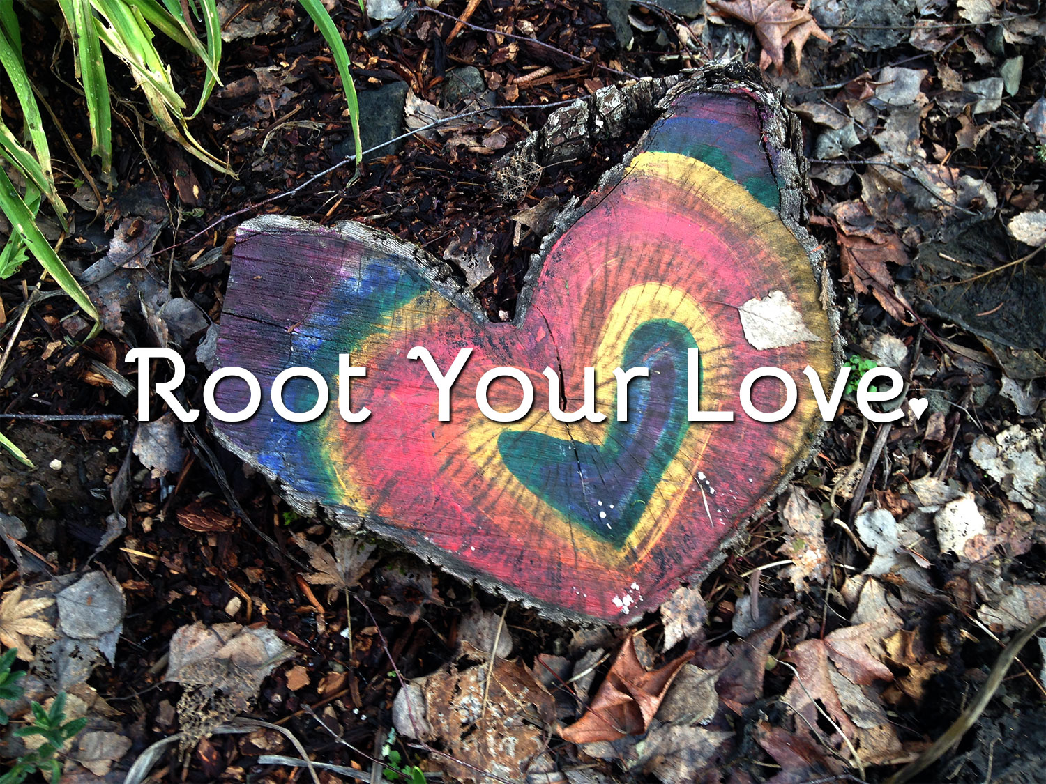 Root in Love